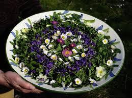 Divoké byliny talíř