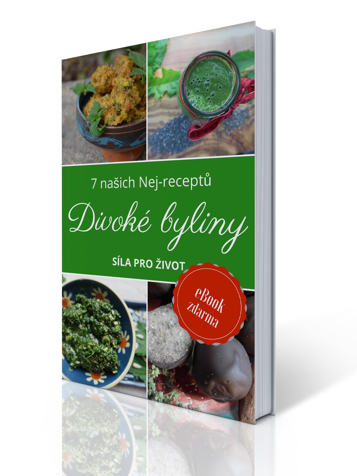 Divoké byliny – 7 našich Nej-receptů